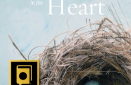 Sheltered in the Heart Now in Paperback!