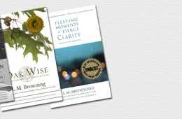 Homebound Publications Award-winners 2013