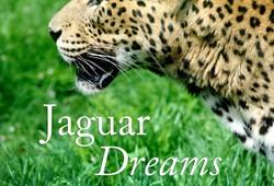 Jaguar Dreams | Audiobook Now Available!