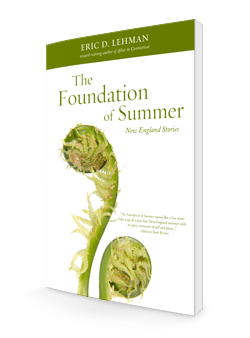 Foundation of Summer 3d-250-store