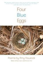 Four_Blue_eggs store