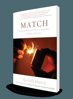 Match 3d 250-store