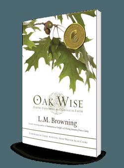 Oak Wise 3d-250-store