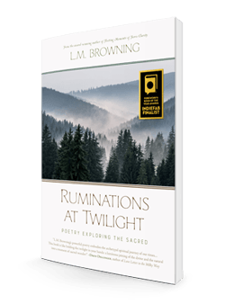 Ruminations 3d T-250-store