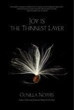 Joy is the Thinnest Layer_Mock_final_sm