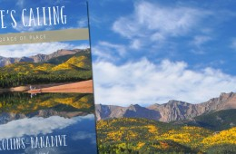 Read the First Chapter of Nature's Calling by Gail Collins-Ranadive