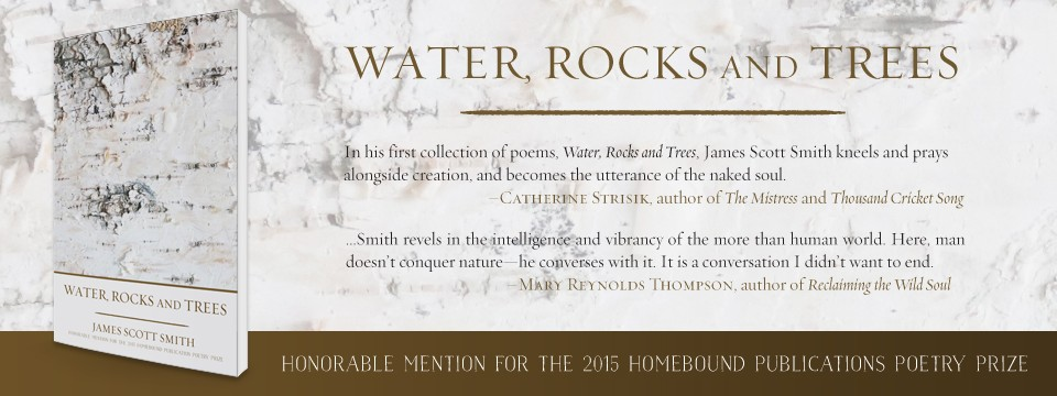Water, Rocks and Trees by James Scott Smith