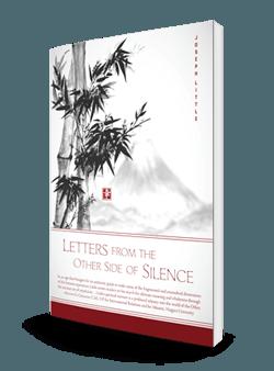 Silence Final 3D-250-store