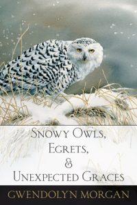 Snowy-Owls-cover-sm