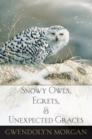 Snowy-Owls-cover-sm