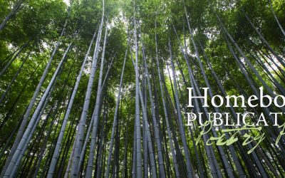 Results of the 2017 Homebound Publications Poetry Prize