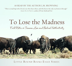 To Lose the Madness Audiobook Cover-sm