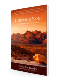 Chewing Sand 3d-250-store