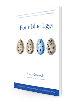 Four Blue Eggs by Amy Nawrocki