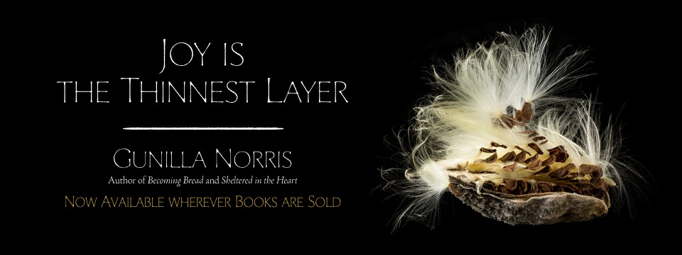 Joy is the Thinnest Layer by Gunilla Norris