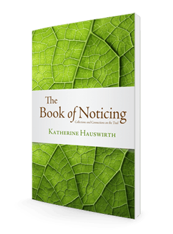 Book of Noticing-Final 3D-250-store