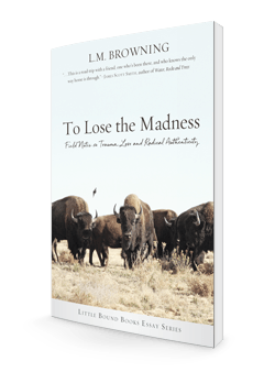 To Lose the Madness store-250