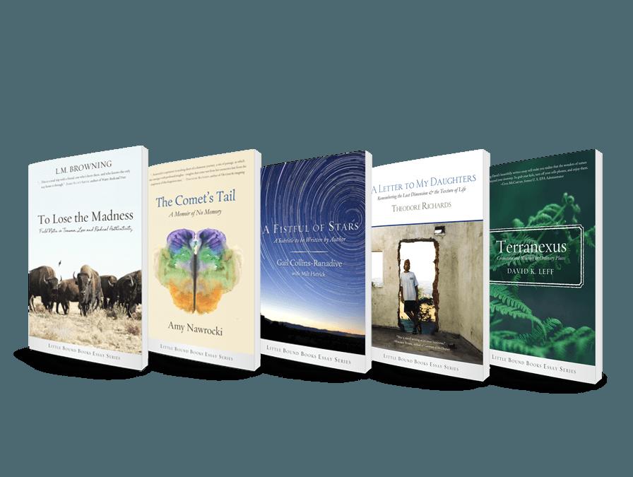 Little Bound Books Essay Series 2018 | Full Set